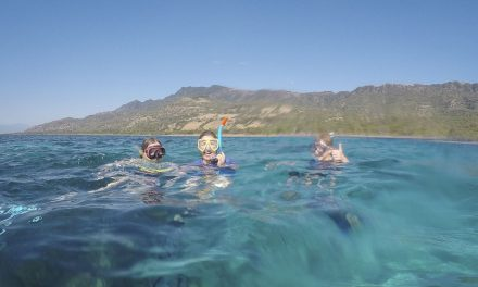 Atauro Island Snorkelling + A Stay at Barry's PLace
